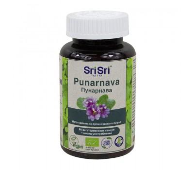 Пунарнава Punarnava Шри Шри, Sri Sri Tattva 60 капсул