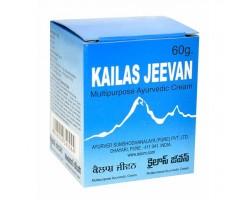 Универсальная мазь-бальзам Каилаш Дживан для наружного и внутреннего применения, Kailas Jeevan 60 г