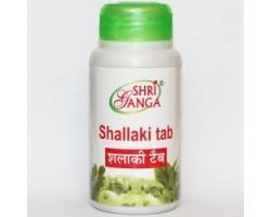 Шаллаки Tab, Shri Ganga 120 таб